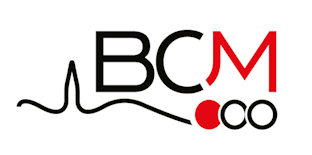Logo bcm 312x150